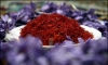 $25m of saffron exported from Khorasan Razavi province